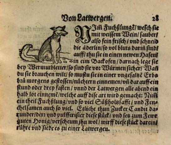 Text ur kokbok från 1500-talet som beskriver läkemedel