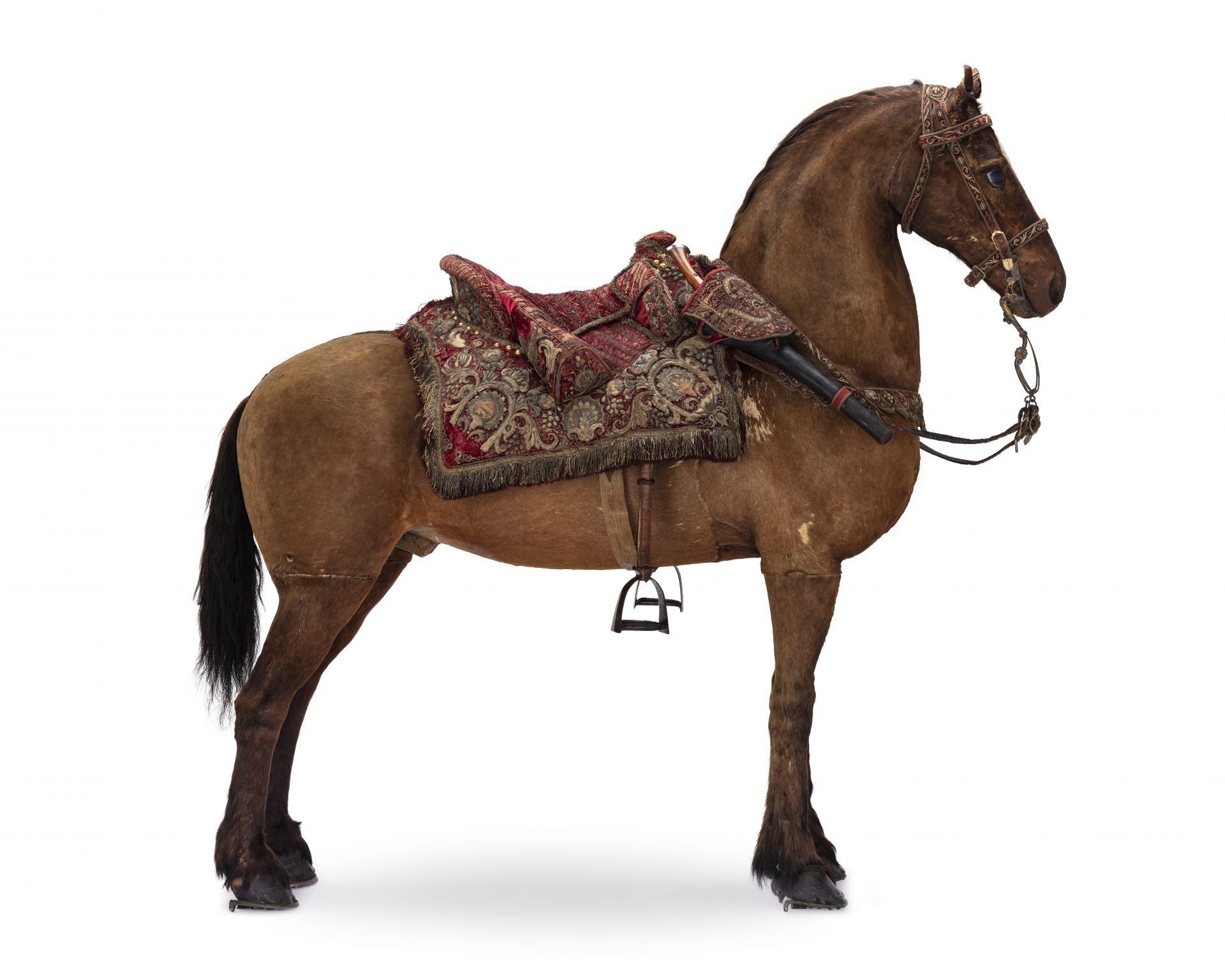 Brun häst sedd från sidan, med huvudet åt höger. På hästen sitter en sadel och ett träns.
