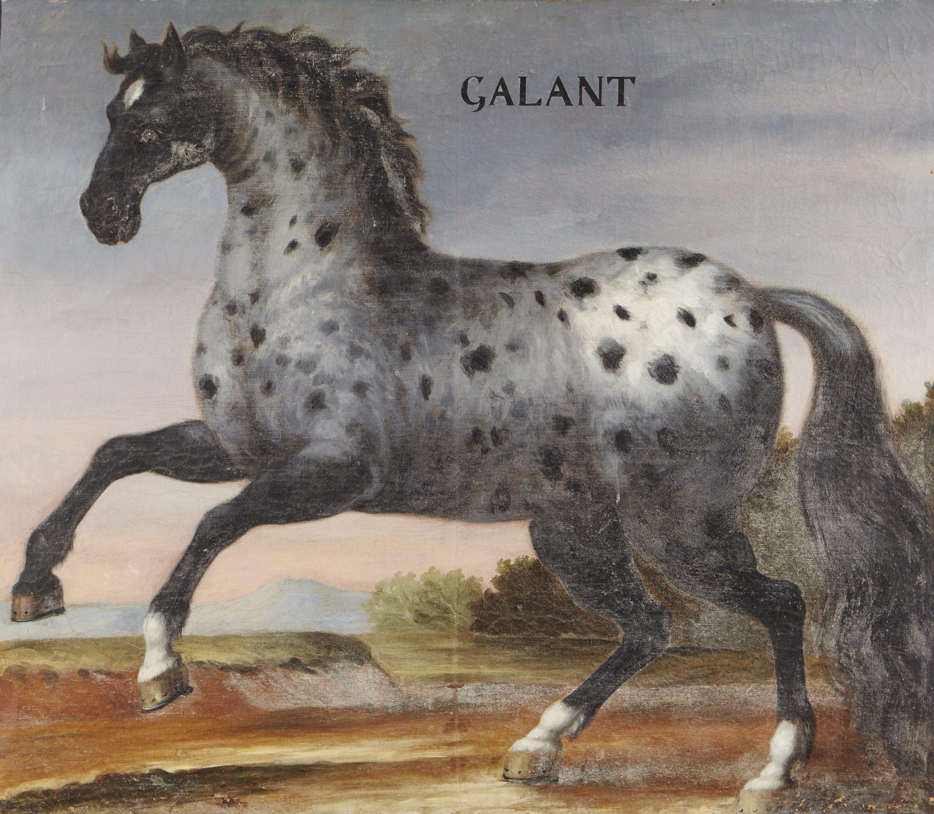 En målning föreställande en fläckig häst som stegrar.